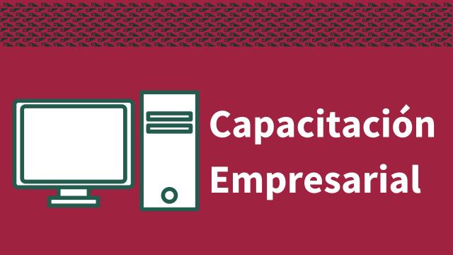 Capacitación en Materia Empresarial